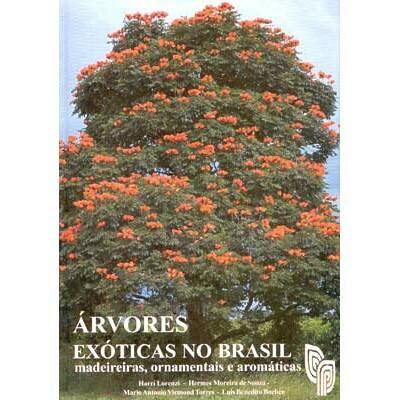 Árvores Exóticas No Brasil