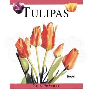 Tulipas: Guia Prático