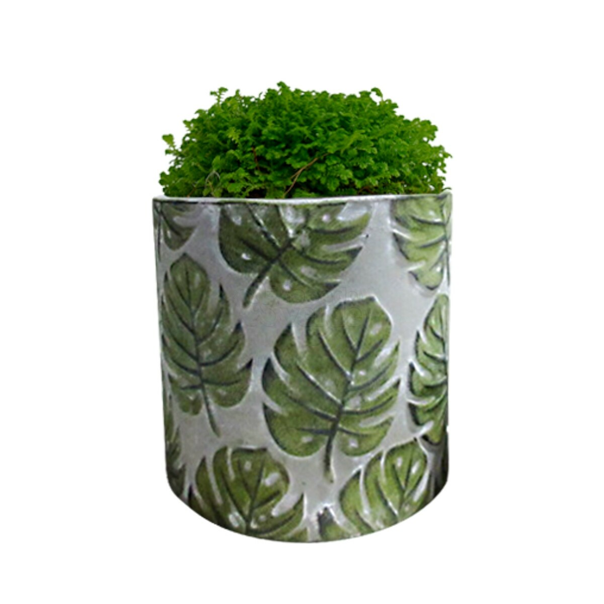 Vaso Embossed Green Leaves
