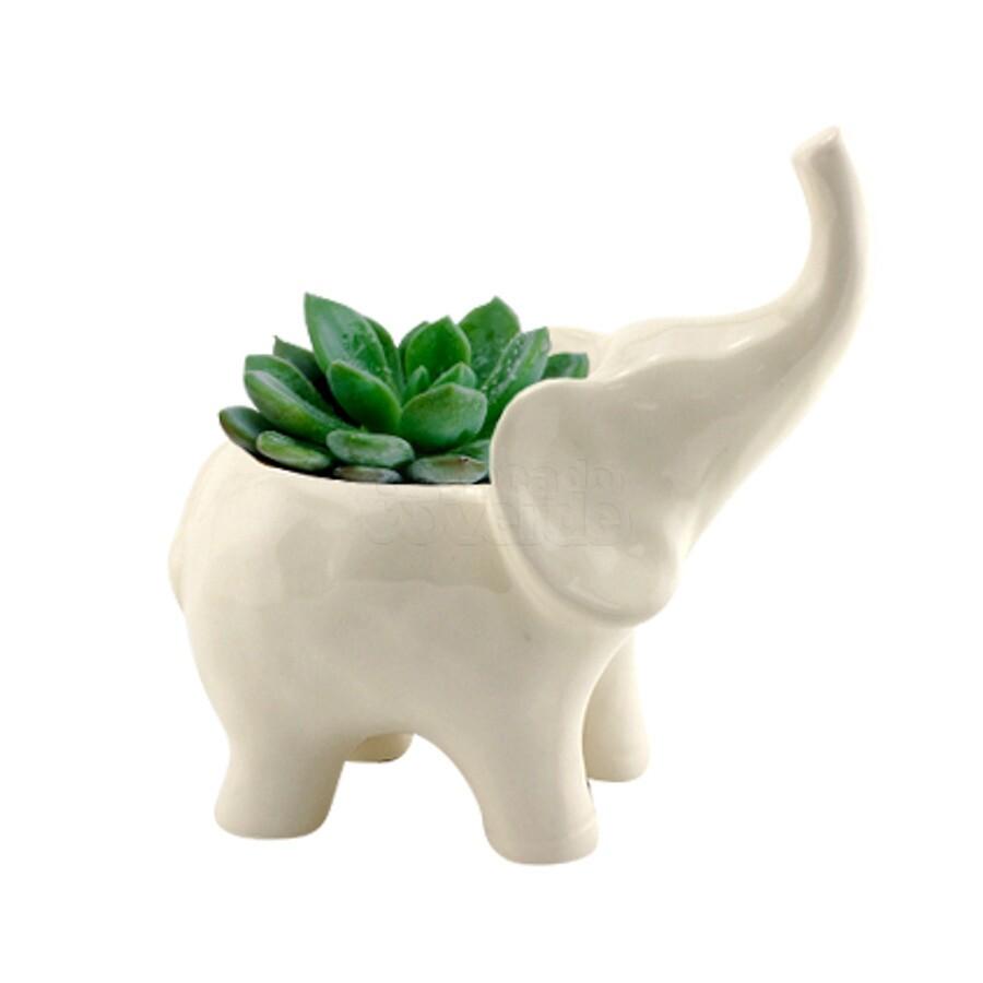 Cachepô Animals Elephante em Cerâmica