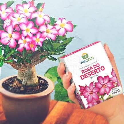 Fertilizante 08-12-10 Rosa do Deserto