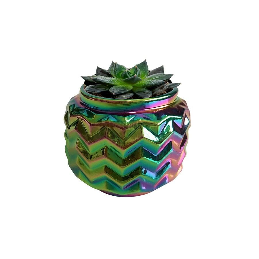 Mini Vaso Rainbow Waves em Cerâmica