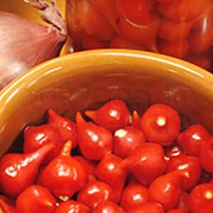 Pimenta Iracema Biquinho (Ref 970)
