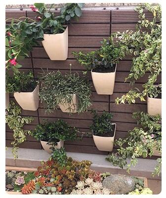 Kit RevestWall Jatobá Jardim Vertical - Vasos de Parede na cor Marfim