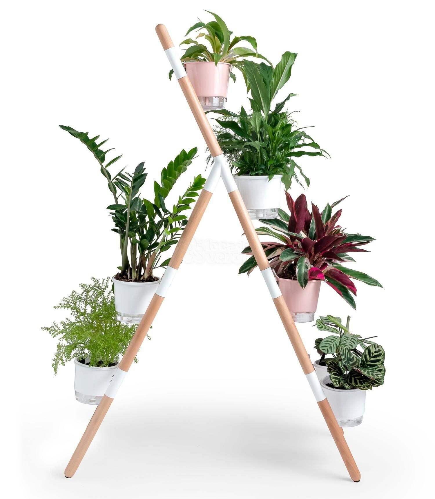 Suporte Escada Para vasos Raiz - Eleve 4 Níveis - Branco