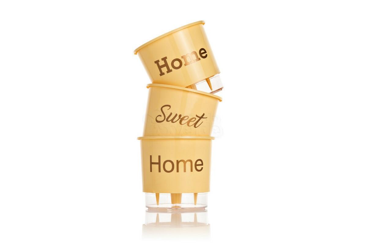 Trio Home Sweet Home - Autoirrigável T2 - 12x11 cm - Cor Pêssego