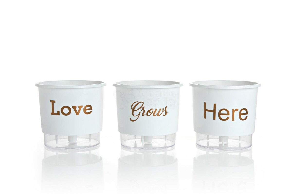 Trio Love Grows Here - Autoirrigável T2 - 12x11 - Cor Branco