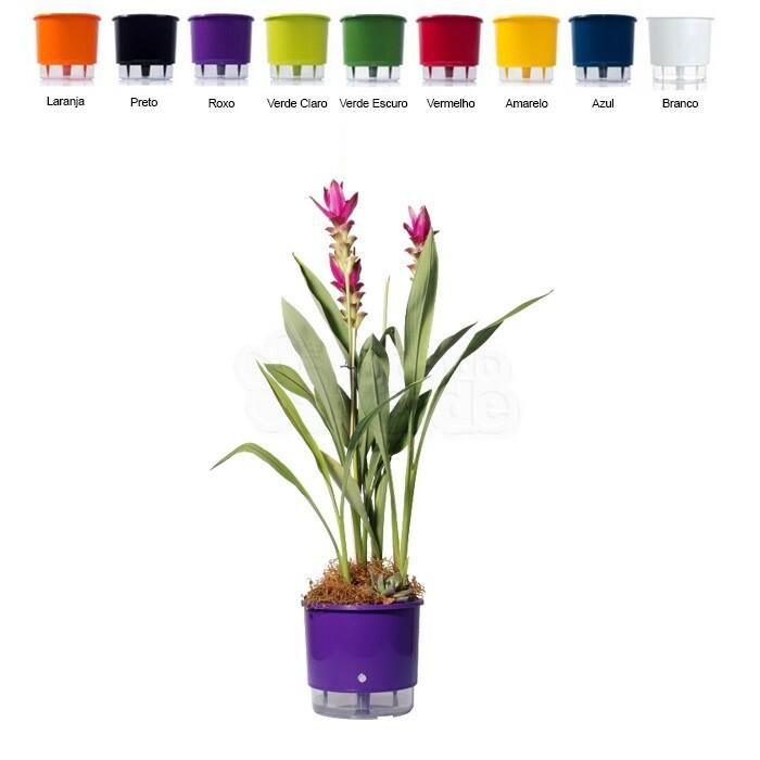 Vaso Autoirrigável Pequeno T2 - 11,4x12,7 cm - 1 Litro