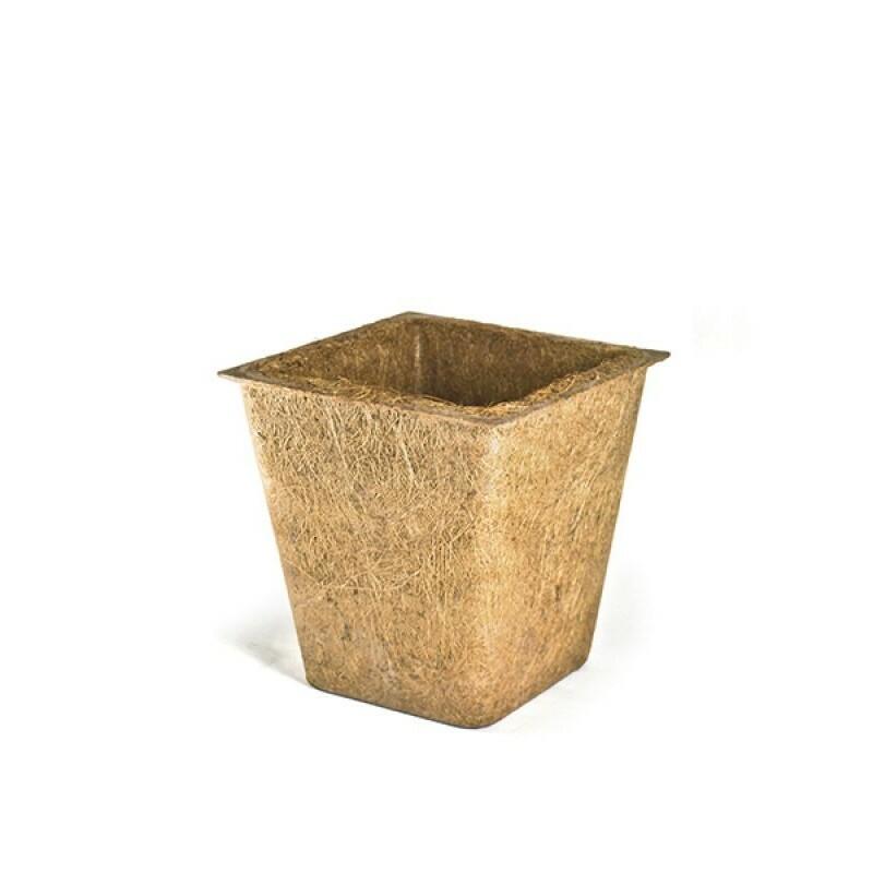 Vaso Fibra de Coco Trapézio - 3 L - Grande - Nutricoco