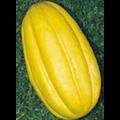 Melão Gaúcho (Caipira) Orgânica - (Ref 542)