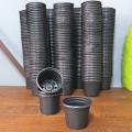 300 Mini Potes NP06 - Atacado - Vasinho para Cactos e Suculentas