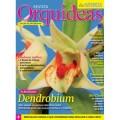 Revista Orquídeas da Natureza - Edição 13