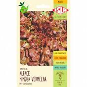 Alface Mimosa Vermelha (Salad Bowl) (Ref 041)