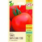 Tomate Santa Clara I-5300 (Ref 273)