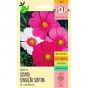 """Cosmos """"Sensação"""" 0,3g (Cosmea) (Ref 354)"""