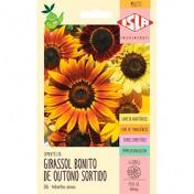 "Girassol ""Bonito de Outono"" 0,8g (Ref 386)"