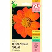 Girassol Mexicano (Ref 457)