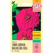 Zínia Gigante da Califórnia Rosa (Ref 838)