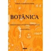 Botânica: Morfologia Interna das Plantas