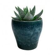 Cachepô Cone Bottom em Cerâmica - 14,0x13,5 cm - Cor Azul - 41166