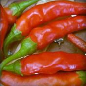 Pimenta de Cayenne (Ref 205)