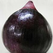 Cebola Híbrida Ibiapaba - Roxa - 10 gramas