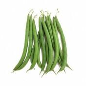 Feijão-Vagem Xaxá (Ref 151) - 50 gramas