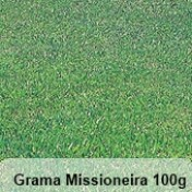 Grama Missioneira (Carpete) -100g