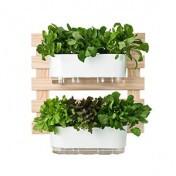 Kit jardim Vertical 60x60 cm - 2 Jardineiras Autoirrigáveis