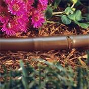 Mangueira de Gotejamento  - 50m - 16mm - Anti Sifão - Pressão Compensada - Elgo