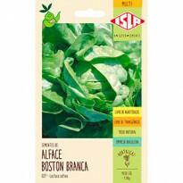 Alface Boston Branca - Manteiga (Ref 027)