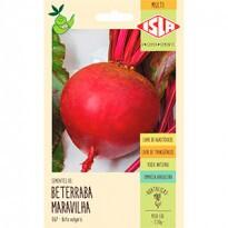 Beterraba Maravilha (Ref 067)