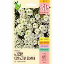 Flor-de-mel (Alyssum Branco) 0,3g (Ref 306)
