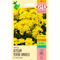 Cesto-de-ouro - Alyssum Amarelo (Ref 307)