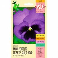 Amor-perfeito Gigante Suíço Roxo (Ref 315)