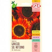 """Girassol """"Sol Noturno"""" (Ref 388)"""