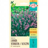 Lavanda (Alfazema) (Ref 485)