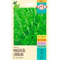 "Manjericão ""Limoncino"" (Ref 499)"