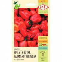Pimenta Boyra Habanero Vermelha (Ref 976)