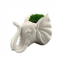 Cachepô de parede Cabeça de Elefante Cerâmica
