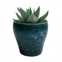 Cachepô Cone Bottom em Cerâmica mini