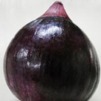 Cebola Híbrida Ibiapaba - Roxa - 10 gramas - Lote:122669