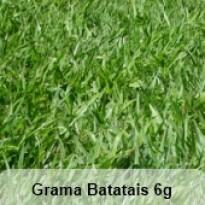 Grama Batatais