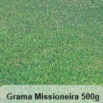 Grama Missioneira (Carpete) - 500 g - sementes de grama