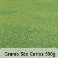 Grama São Carlos 500g