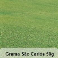 Grama São Carlos 50 g