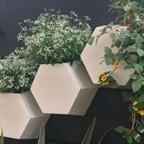 Vaso de parede Colmeia 25x29,5 cm  para Jardim Vertical - Cor Antique Branco