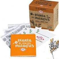 Kit de Sementes - Planta de Casa Faz Milagres (Camomila, Lavanda e Sálvia)