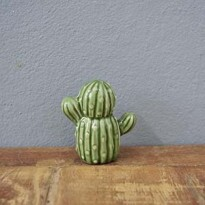 Mini Cactus Berrel