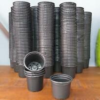 500 Mini Potes NP06 - Atacado - Vasinho para Cactos e Suculentas